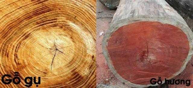 Vì sao nên lựa chọn trường kỷ gỗ gụ